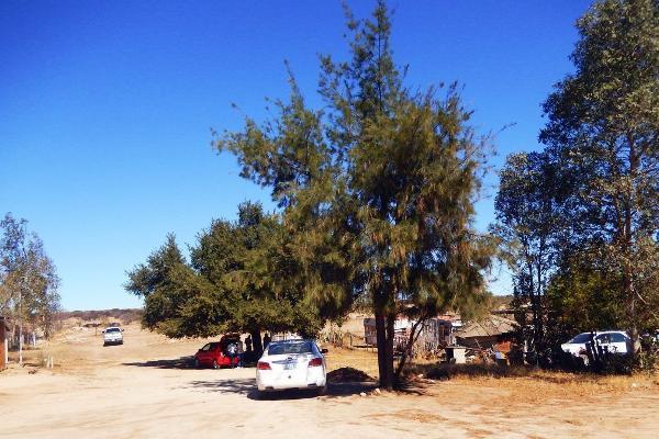 Foto de rancho en venta en  , chula vista, tecate, baja california, 6206783 No. 05