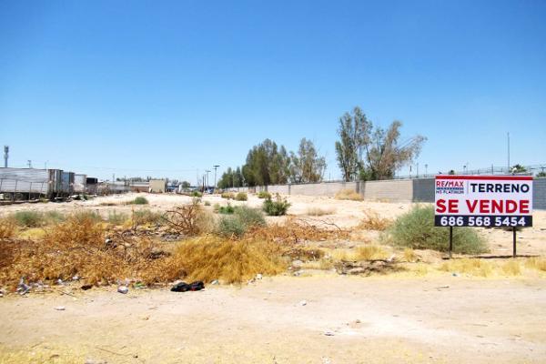 Foto de terreno industrial en venta en circuito brasil , álamo, mexicali, baja california, 7491408 No. 06