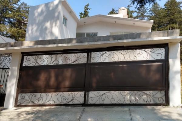 Foto de casa en venta en circuito luis portillo , rancho la mora, toluca, méxico, 0 No. 02