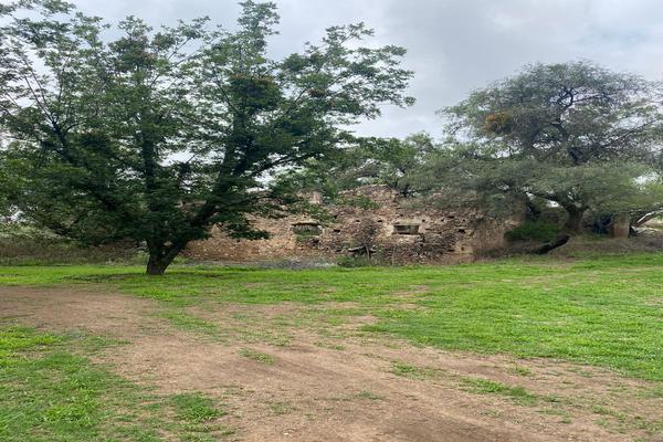 Foto de terreno habitacional en venta en circuito paseo de la montaña , cuevas (huachimole de cuevas), guanajuato, guanajuato, 0 No. 13