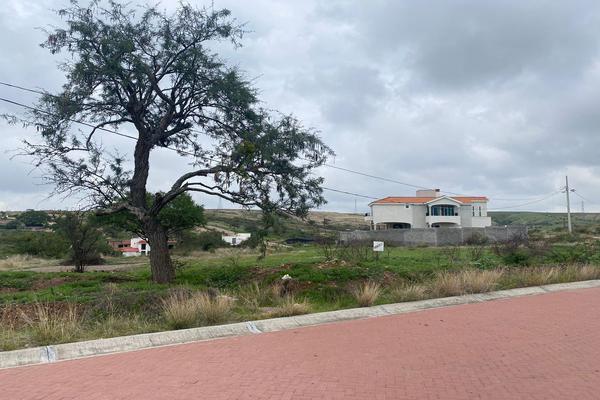 Foto de terreno habitacional en venta en circuito paseo de la montaña , cuevas (huachimole de cuevas), guanajuato, guanajuato, 0 No. 18