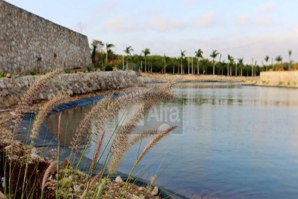 Foto de terreno habitacional en venta en circuito suroeste , playa bonita, campeche, campeche, 7146410 No. 03