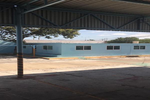 Foto de nave industrial en renta en  , ciudad del carmen centro, carmen, campeche, 14343011 No. 09