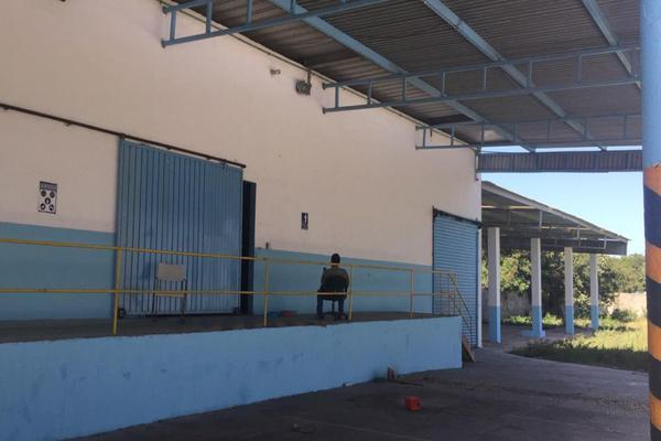 Foto de nave industrial en renta en  , ciudad del carmen centro, carmen, campeche, 14343011 No. 32