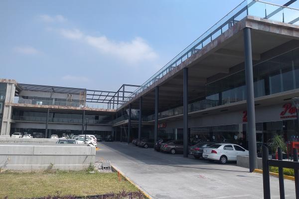 Foto de local en renta en  , ciudad guadalupe centro, guadalupe, nuevo león, 14037848 No. 03