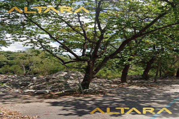 Foto de terreno habitacional en venta en  , ciudad valles, ciudad valles, san luis potosí, 20255950 No. 01