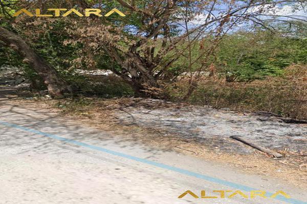 Foto de terreno habitacional en venta en  , ciudad valles, ciudad valles, san luis potosí, 20255950 No. 04