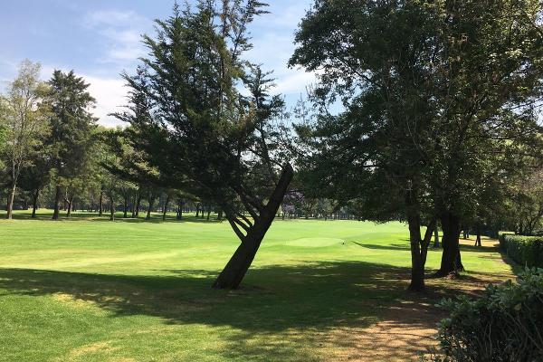 Foto de casa en renta en club de golf chapultepec - avenida del conscripto , lomas hipódromo, naucalpan de juárez, méxico, 5877702 No. 14