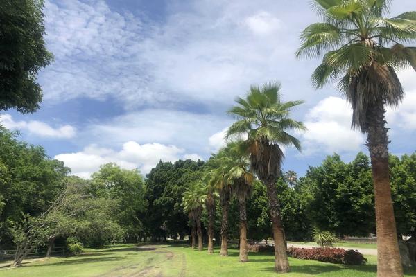 Foto de terreno habitacional en venta en  , club haciendas de ticuman, tlaltizapán de zapata, morelos, 7495938 No. 04