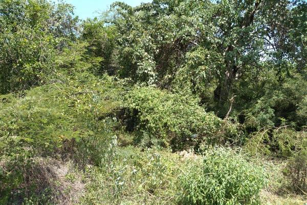 Foto de terreno habitacional en venta en  , club haciendas de ticuman, tlaltizapán de zapata, morelos, 9083363 No. 03