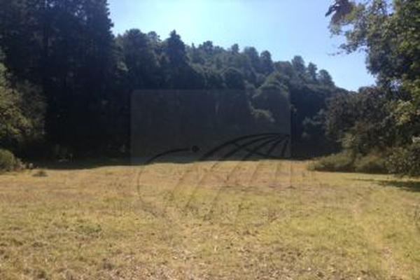 Foto de terreno habitacional en venta en  , coapexco, amecameca, méxico, 19146133 No. 04