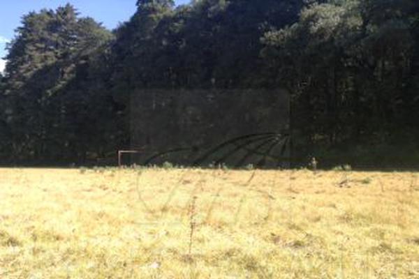 Foto de terreno habitacional en venta en  , coapexco, amecameca, méxico, 19146133 No. 11