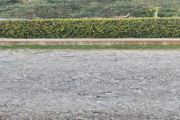 Foto de terreno habitacional en venta en  , coatepec centro, coatepec, veracruz de ignacio de la llave, 17374207 No. 09