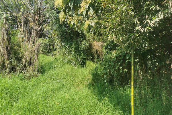 Foto de terreno habitacional en venta en  , coatepec centro, coatepec, veracruz de ignacio de la llave, 0 No. 04