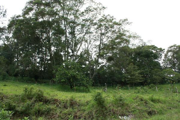 Foto de terreno habitacional en venta en  , coatepec centro, coatepec, veracruz de ignacio de la llave, 20162830 No. 04