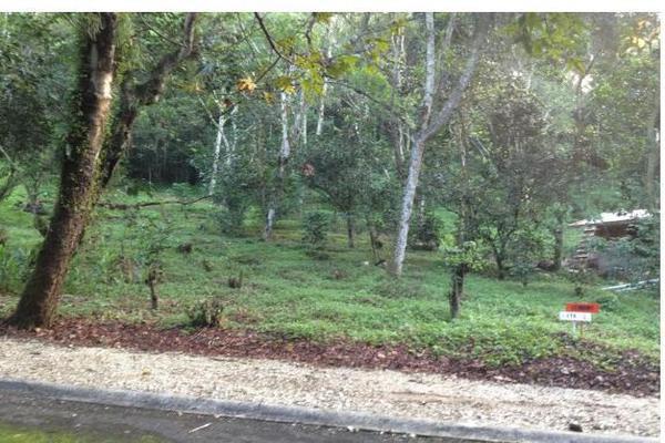 Foto de terreno habitacional en venta en  , coatepec centro, coatepec, veracruz de ignacio de la llave, 0 No. 02