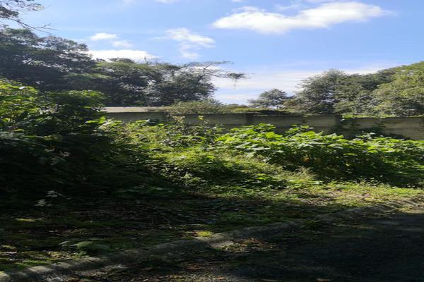 Foto de terreno habitacional en venta en  , coatepec centro, coatepec, veracruz de ignacio de la llave, 0 No. 06