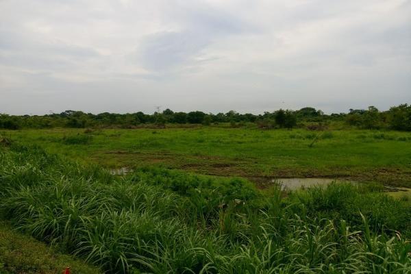 Foto de terreno habitacional en venta en coatzacoalcos - cardenas kilometro 119 s/n , rio seco 1a secc, cárdenas, tabasco, 8848790 No. 03