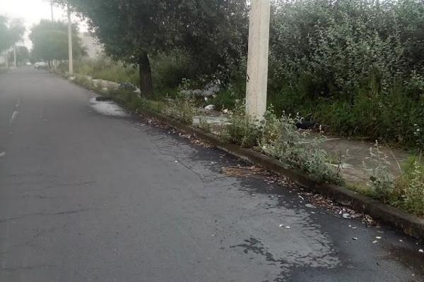 Foto de terreno comercial en venta en  , coaxustenco, metepec, méxico, 5693569 No. 03