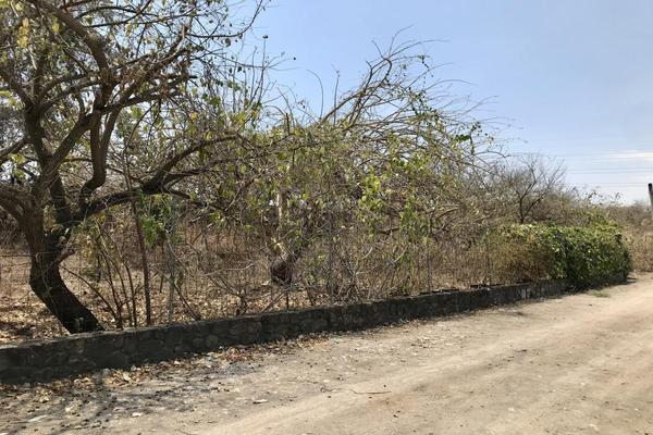 Foto de terreno habitacional en venta en cocada , lomas de jiutepec, jiutepec, morelos, 20109269 No. 06