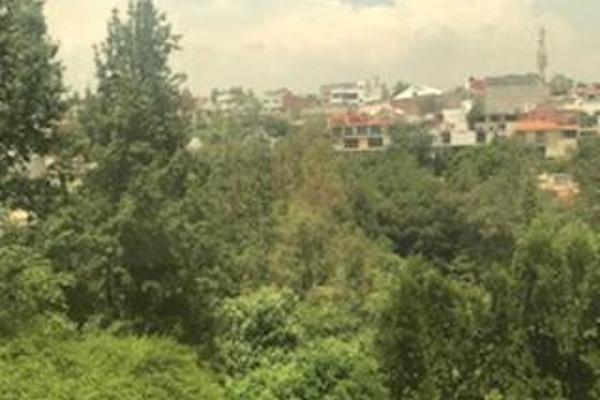 Foto de departamento en renta en cofre de perote , lomas de chapultepec ii sección, miguel hidalgo, distrito federal, 2728108 No. 04