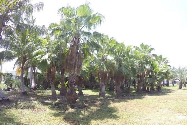 Foto de terreno habitacional en venta en  , colegios, benito juárez, quintana roo, 17090887 No. 04