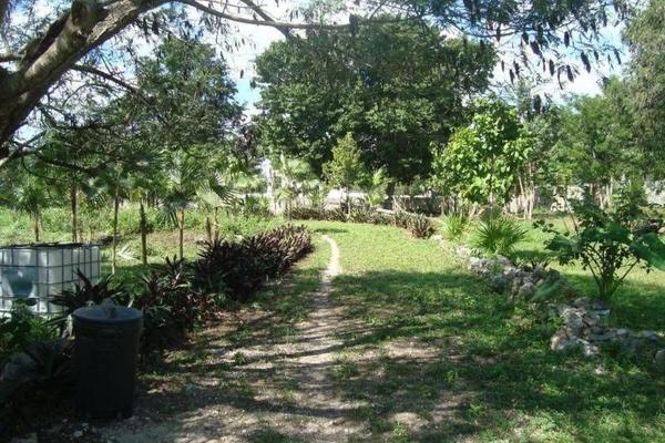 Foto de terreno comercial en venta en  , colegios, benito juárez, quintana roo, 8283482 No. 03