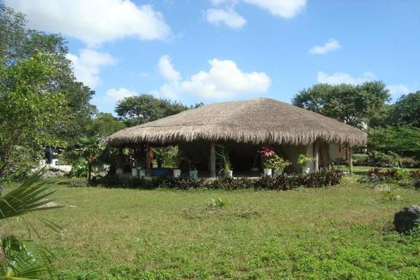Foto de terreno comercial en venta en  , colegios, benito juárez, quintana roo, 8283482 No. 05