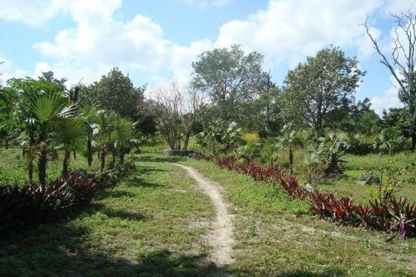 Foto de terreno comercial en venta en  , colegios, benito juárez, quintana roo, 8283482 No. 06