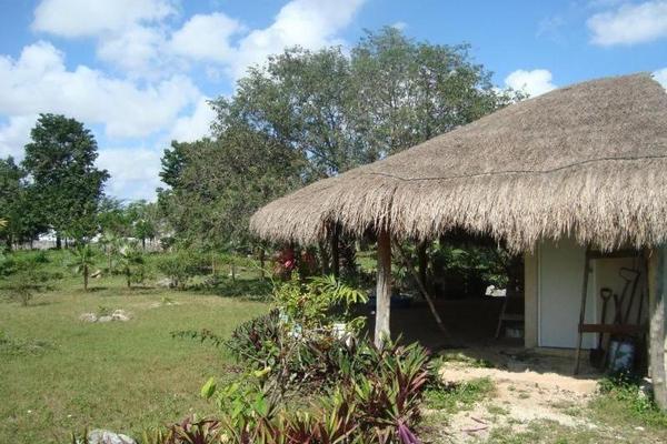 Foto de terreno comercial en venta en  , colegios, benito juárez, quintana roo, 8283482 No. 10
