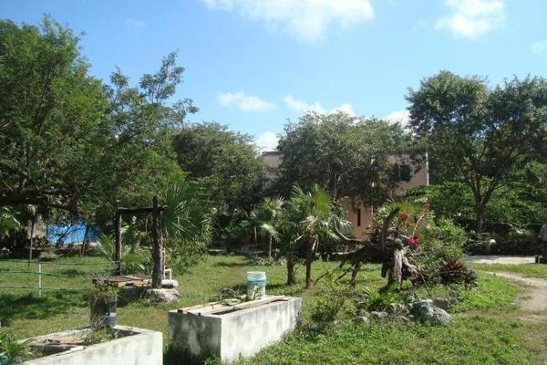 Foto de terreno comercial en venta en  , colegios, benito juárez, quintana roo, 8283482 No. 12