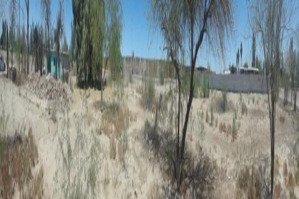 Foto de terreno comercial en venta en colon poniente , eligio esquivel, mexicali, baja california, 5388629 No. 04