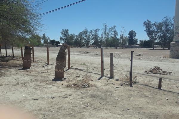 Foto de terreno comercial en venta en colon poniente , eligio esquivel, mexicali, baja california, 5388629 No. 07