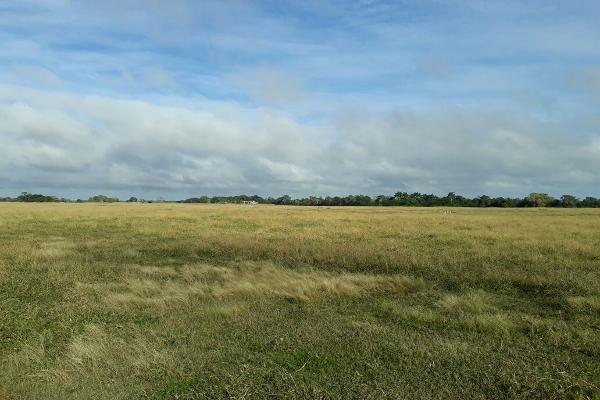 Foto de terreno habitacional en venta en  , colonia yucatán, tizimín, yucatán, 4674492 No. 02