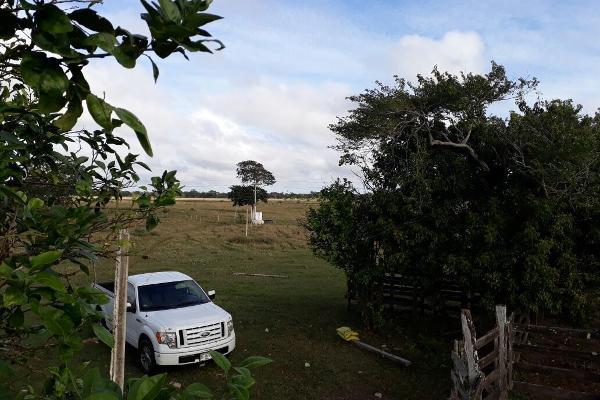 Foto de terreno habitacional en venta en  , colonia yucatán, tizimín, yucatán, 4674492 No. 03