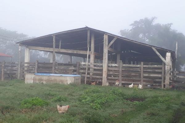 Foto de terreno habitacional en venta en  , colonia yucatán, tizimín, yucatán, 4674492 No. 05