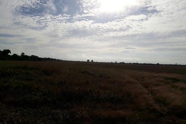 Foto de terreno habitacional en venta en  , colonia yucatán, tizimín, yucatán, 4674492 No. 06