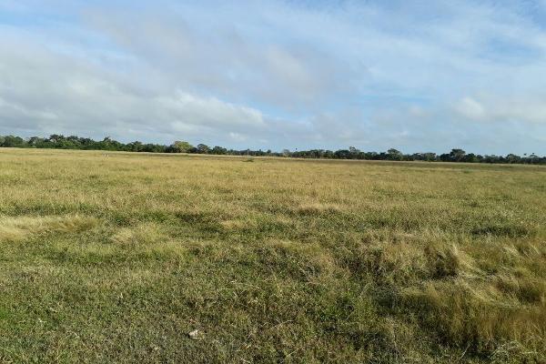 Foto de terreno habitacional en venta en  , colonia yucatán, tizimín, yucatán, 4674492 No. 11