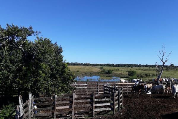 Foto de terreno habitacional en venta en  , colonia yucatán, tizimín, yucatán, 4674492 No. 21