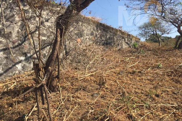 Foto de terreno habitacional en venta en  , comala, comala, colima, 17280066 No. 05