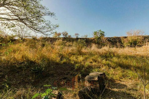 Foto de terreno habitacional en venta en  , comala, comala, colima, 20342424 No. 03