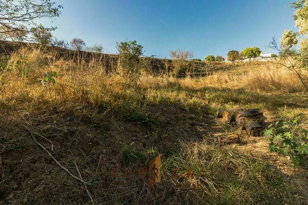Foto de terreno habitacional en venta en  , comala, comala, colima, 20342424 No. 04
