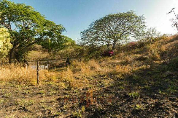 Foto de terreno habitacional en venta en  , comala, comala, colima, 20342424 No. 06