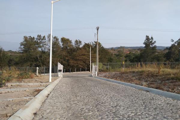 Foto de terreno habitacional en venta en comala-nogalera lote 4, la nogalera, comala, colima, 9266986 No. 03