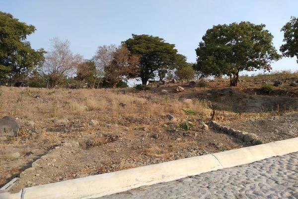 Foto de terreno habitacional en venta en comala-nogalera lote 4, la nogalera, comala, colima, 9266986 No. 04