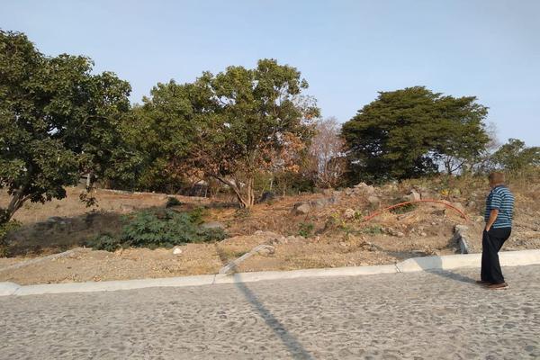 Foto de terreno habitacional en venta en comala-nogalera lote 4, la nogalera, comala, colima, 9266986 No. 06