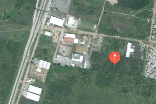 Foto de terreno comercial en venta en  , comercial fimex, altamira, tamaulipas, 3137948 No. 03