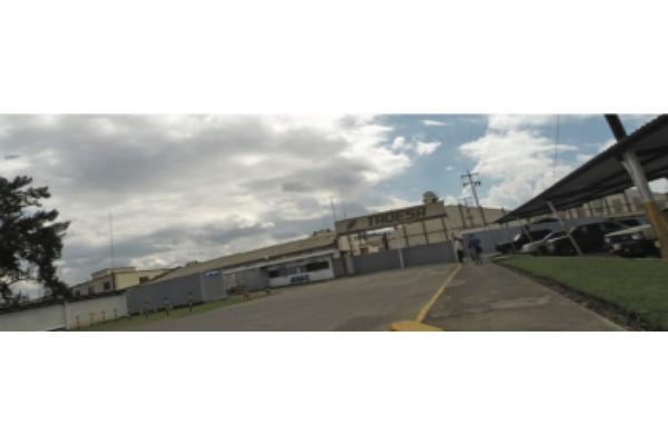 Foto de nave industrial en venta en  , conasupo, tepic, nayarit, 14031721 No. 03