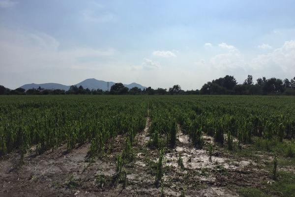 Foto de terreno habitacional en venta en concepción del valle , concepción del valle, tlajomulco de zúñiga, jalisco, 3119831 No. 03