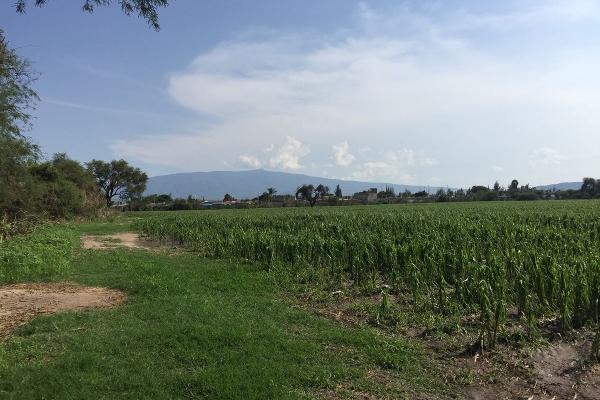 Foto de terreno habitacional en venta en concepción del valle , concepción del valle, tlajomulco de zúñiga, jalisco, 3119831 No. 04